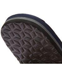 Barbour Toeman Flip Flops - Blue