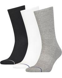 Calvin Klein Calvin Klein Crew Gavin 3 Pack Grey / White / Black Socks