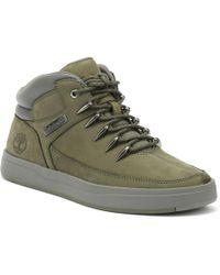 Calzature Timberland Davis Square Uomo Wheat Mid Hiker Sneaker