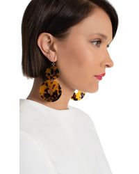 Kenneth Jay Lane Tortoise Double Circle Earring - Brown