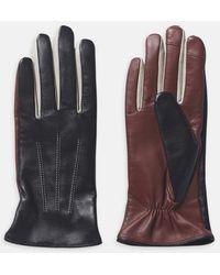 Becksöndergaard Anahita Gloves In Black - Multicolor