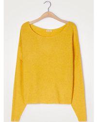 American Vintage Suéter de punto Damsville Mango amarillo brillante