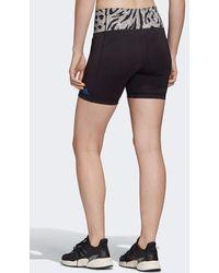 adidas Cree que este pantalón corto de cintura alta negro