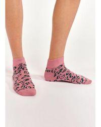 Essentiel Antwerp Alkiri Animal Pattern Socks - Pink