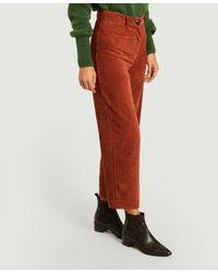 Sessun Velvet Cybill Trousers - Red