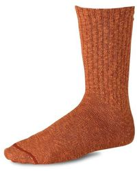 Red Wing Cotton Ragg Socks Rust Burgundy - Brown