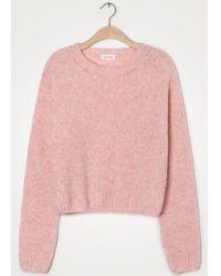 American Vintage Fogwood Rose Pink Knit - Rosa