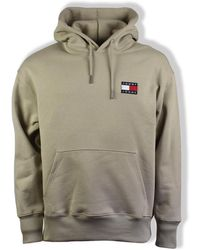 Tommy Hilfiger Tommy Jeans Stone Badge Sudadera con capucha - Multicolor