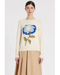 Weekend by Maxmara Domizia Sweater - Multicolor