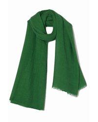 American Vintage Césped bufanda fatistreet - Verde