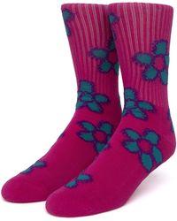 Huf Pushing Daisies Tt Socks - Purple