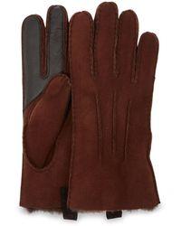 UGG Sheepskin Glove - Brown