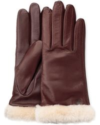 UGG Classic Leather Smart Glove pour - Marron