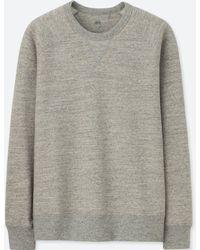 Uniqlo - Long Sleeve Sweatshirt - Lyst