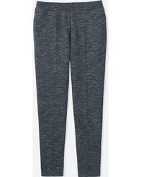 Uniqlo - Women Dry Sweatpants - Lyst