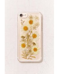 Urban Outfitters - Oops-a-daisy Iphone 8/7/6/6s Case - Lyst