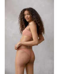 Out From Under Pinch Me Seamless Bikini - Brown