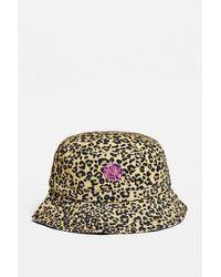 Urban Outfitters Uo Bubble Logo Leopard Print Canvas Bucket Hat - Multicolour