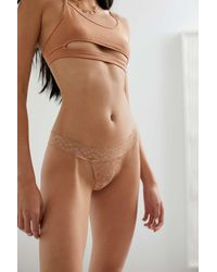 Out From Under All-over Lace Thong - Brown