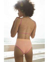 Out From Under Seamless Seersucker High-waisted Bikini Bottom - Orange