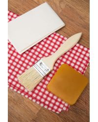 Urban Outfitters Diy Beeswax Wrap Kit - Multicolour