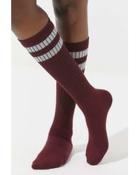 Out From Under - Varsity Striped Knee Sock - Lyst