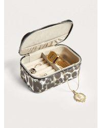Estella Bartlett Animal Print Mini Jewellery Box - Womens All - Multicolour