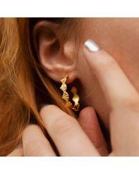 Rosie Kent Large Scallop Sterling Silver Hoop Earrings - Brown
