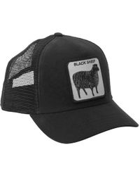 c8040b897607e Goorin Bros  animal Farm - Naughty Lamb  Trucker Cap in Black for ...