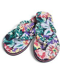 Vera Bradley Flip Flops - Blue
