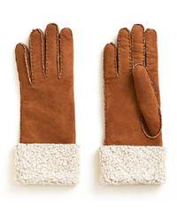 Veronica Beard Merino Donna Shearling Gloves - Brown
