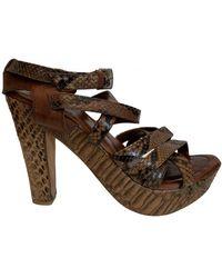 Lanvin Python Sandals - Brown