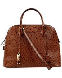 Hermès Bolide Brown Ostrich Handbag
