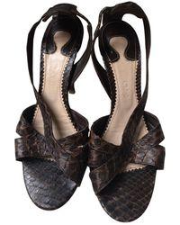 Chloé Python Sandals - Brown
