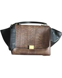 Celine Trapèze Multicolor Python Handbag