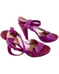 Chloé Python Sandals - Purple