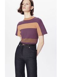 Victoria Beckham Mini-stripe Knitted Rib Tee In Ginger And Teal - Purple