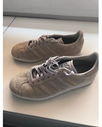 adidas Baskets nubuck gris