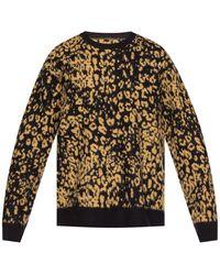 AllSaints 'wildcat' Patterned Sweater Black