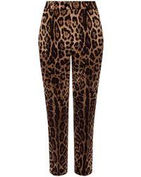 Dolce & Gabbana Wool Trousers - Brown