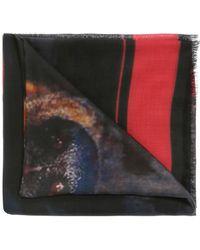 Givenchy Rottweiler Shawl - Black