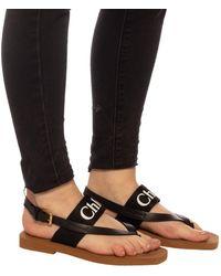 Chloé Woody Logo Strap Sandals - Black
