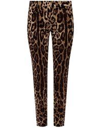 Dolce & Gabbana Leopard Print Trousers - Brown