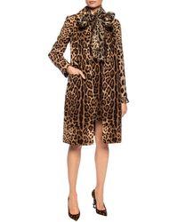 Dolce & Gabbana - Leopard-printed Coat Brown - Lyst