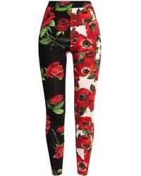 Dolce & Gabbana Floral Print Leggings - Red