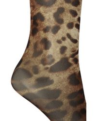 Dolce & Gabbana Long Socks With Leopard Print Brown