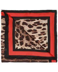 Dolce & Gabbana Stripe Detail Ascot - Brown