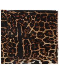 Saint Laurent Leopard Print Shawl - Brown