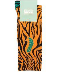 Aries Socks - Orange