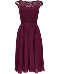 Wallis - **jolie Moi Berry Lace Midi Dress - Lyst